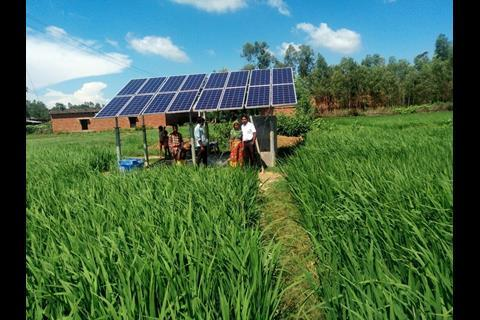 Image of solar pumps in rice fields in the village of Sarvantara in Uttar Pradesh